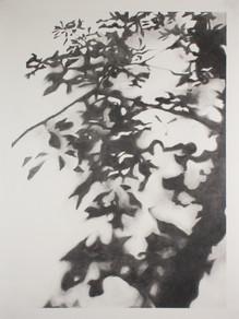A Shadow Standing Still #1