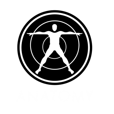 Anatomy Music Group