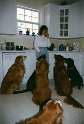 Kerry with her pack