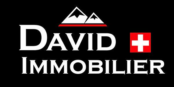 Logo_David_Immobilier_Définitif.jpg