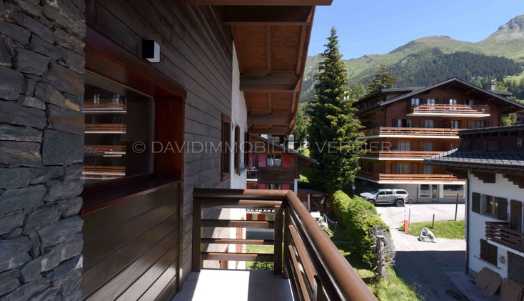 AQQ_5282©David_Collinet_Verbier.jpg
