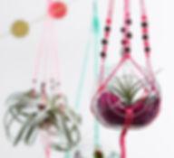 terrarium dubai, creative terrarium dubai,  custom made gift dubai, macrame terraruim