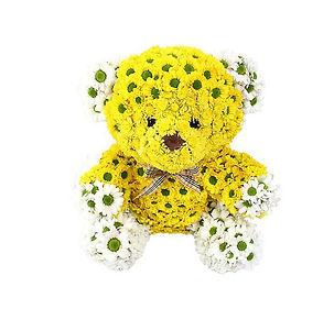 flower bear dubai, dubai presents, dubai flower, dubai creative flower delivery, flower animal, creatve gift dubai, dubai present, bithday gift, occasion gift, any occasion present dubai