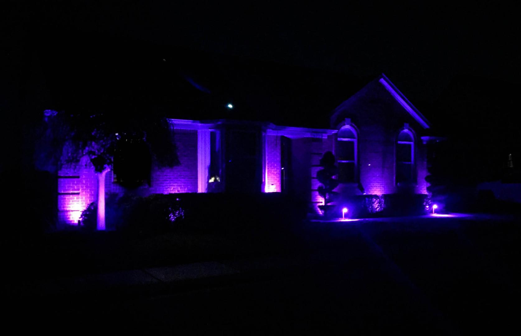 Colored LED Lighting