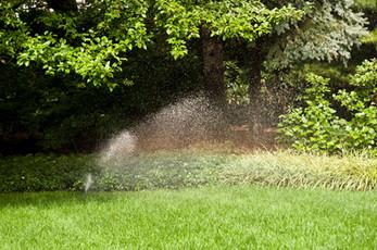 Impact Sprinkler Head