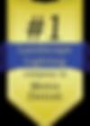 lakeside lighting award logo.png