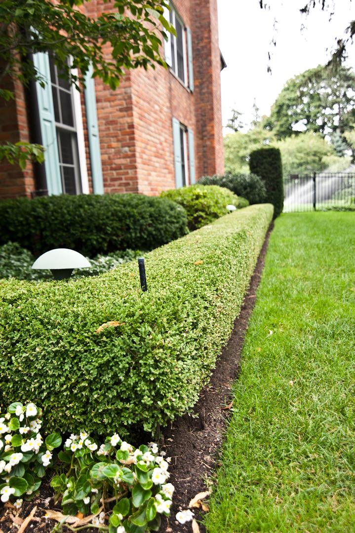 Sprinkler Heads in Shrub Hedge