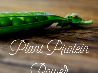 Ten Non Soy Plant Based Protein Sources