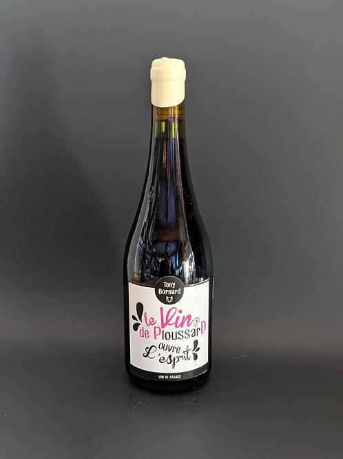 Le vin de Ploussard ouvre l'esprit, Tony Bornard