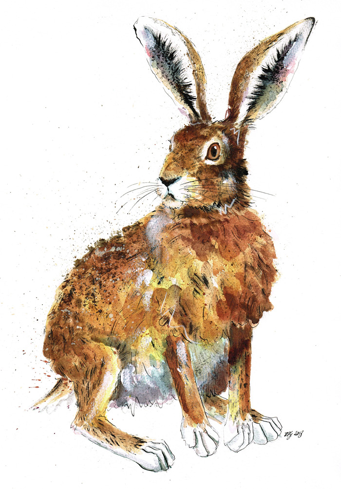A3 Giclee Art Top Quality Print Watercolour animal Art Hare rabbit wildlife