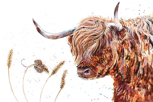 'Wind Swept' Highland Coo Original Ink & Watercolour