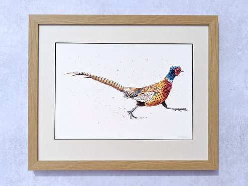 'Brenin' Pheasant Limited Edition Giclée Print