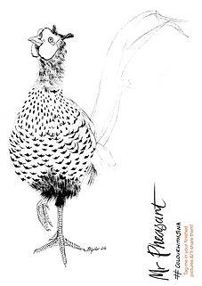 PheasantColour.jpg