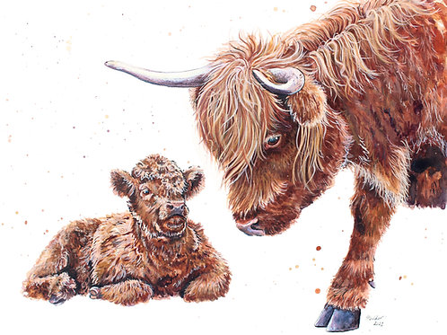'A Gentle Moo' Original Highland Cow Painting