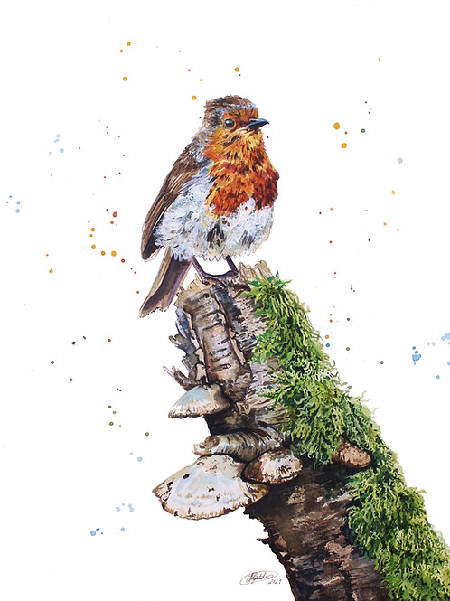 'King of the Castle' Robin Limited Edition Giclée Print