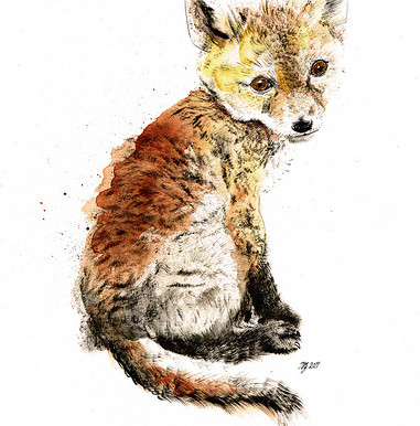 Winging It - Starting Business as a Wildlife Artist