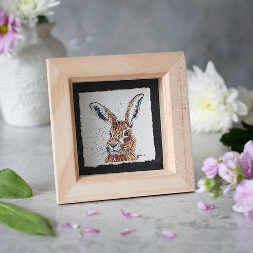 Hare Mini Box Frame