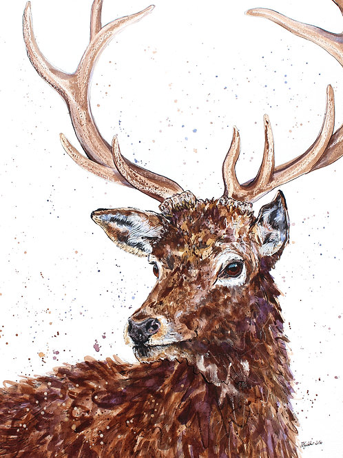 'Mackenzie' Original Ink and Watercolour Stag Painting
