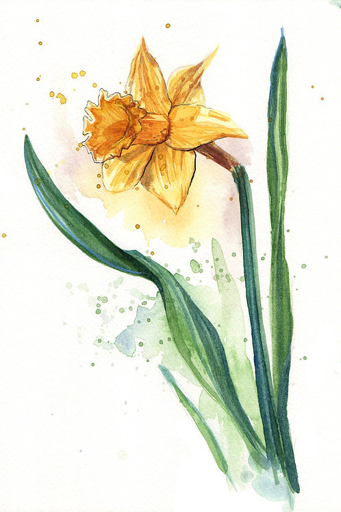 'Daffodil' Original Watercolour