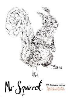squirrelcolour.jpg