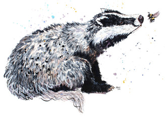 This is the latest character in the badger series. I have also really enjoyed including bees in my paintings lately and love the relationship between the two in this piece.     Currently this painting is framed in a lead effect frame but this can be changed or purchased without a frame. If you would like to see please get in touch and I will send you some photos. The colour of the frame can be seen here.  'My Stripes Are Better Than Your Stripes'