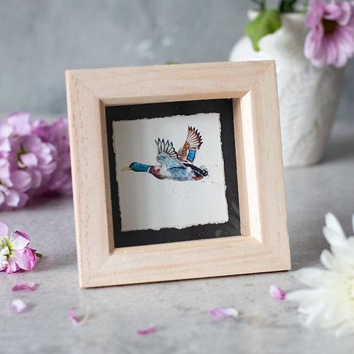 Flying Duck Mini Box Frame