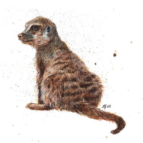 'Meerkat' Original Painting