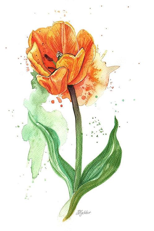 'Orange Tulip' Original Painting