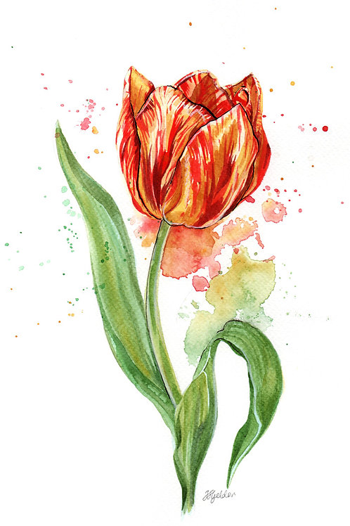 'Tulip' Original Watercolour