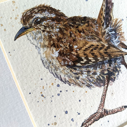 Mini Framed Original Wren 'Ruffles'