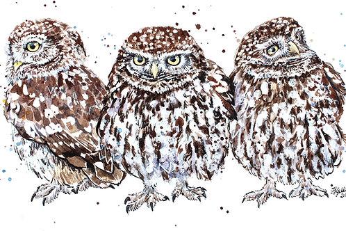 Original Ink & Watercolour 'A Grumpy Bundle' Little Owls