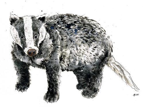 'Badger' Original Painting