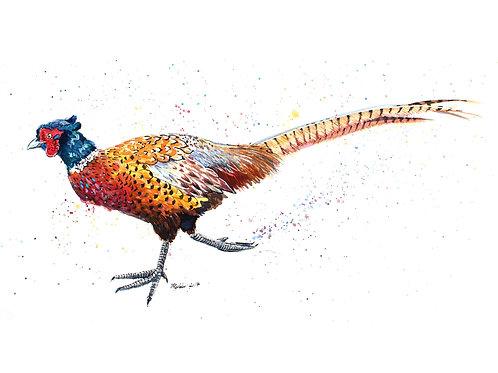 'Gerard' Original Pheasant Painting