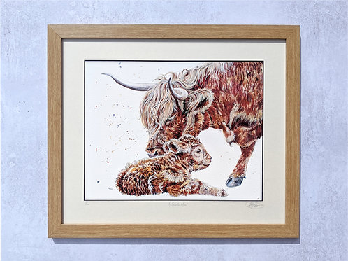 A Tender Moo Limited Edition Print