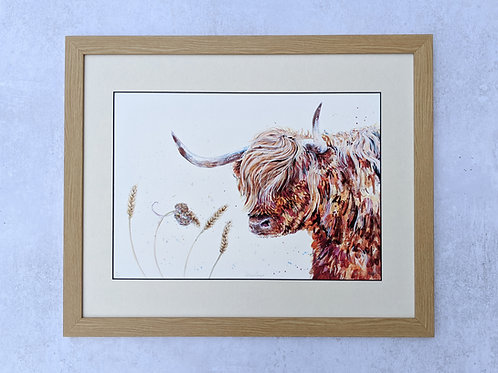 'Wind Swept' Highland Coo Limited Edition Giclée Print