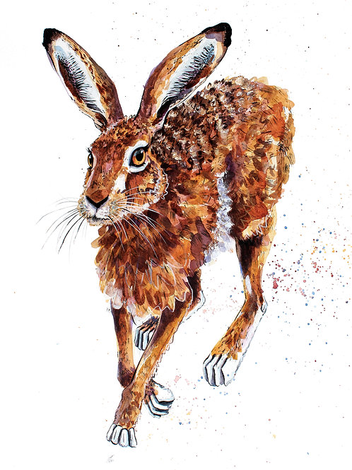 'Hope' Original Hare Painting