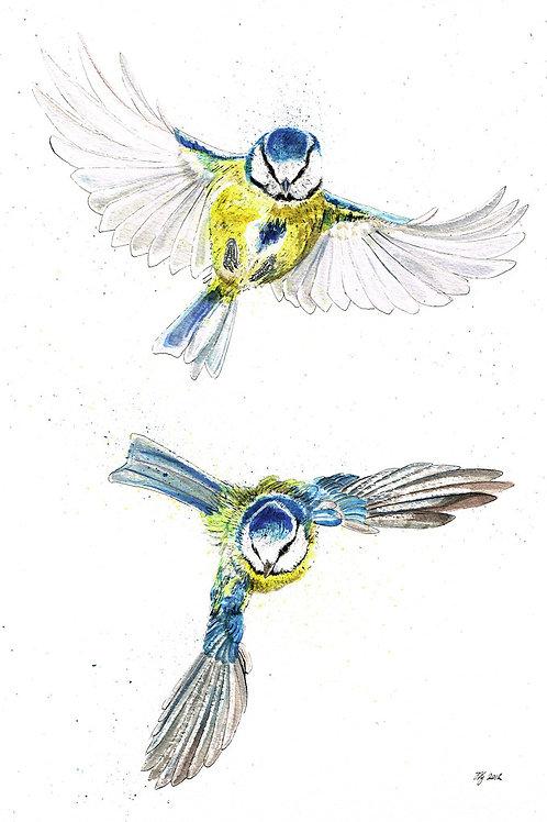 'Bluetits in Flight' Original Painting