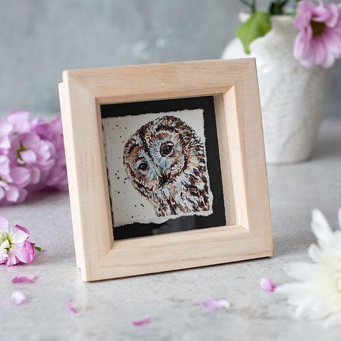 Tawny Owl Mini Box Frame