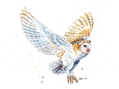 'Breeze' Original Barn Owl Inks and Watercolours