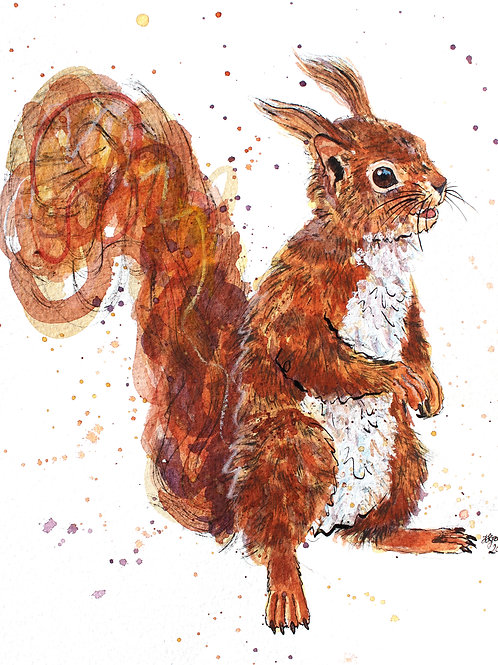 'Hazel' Red Squirrel Painting