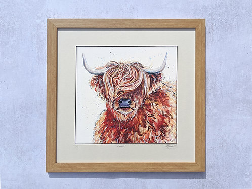 'Hamish' the Coo Limited Edition Giclée Print