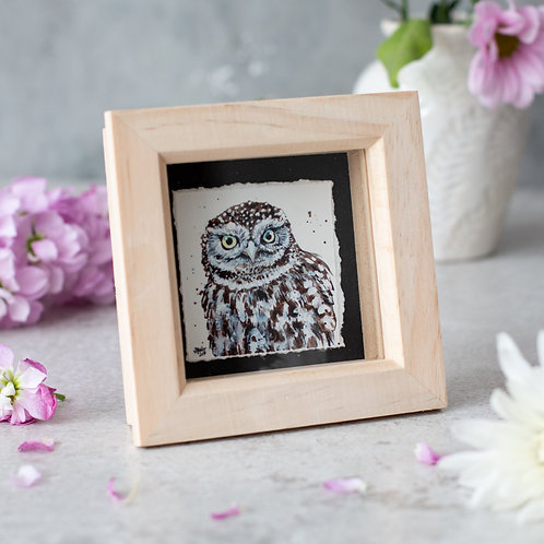 Little Owl Mini Box Frame