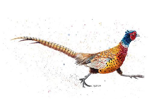 'Brenin' Original Pheasant Painting