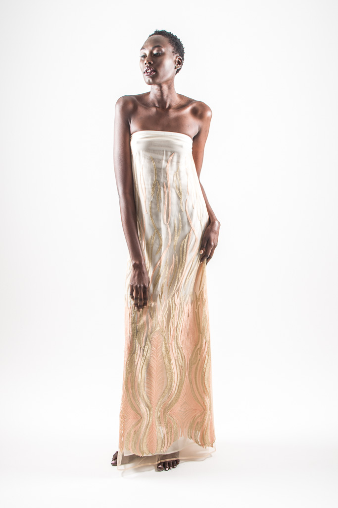 pheonix dress