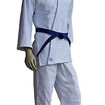 kimono-judo-mifune.jpg