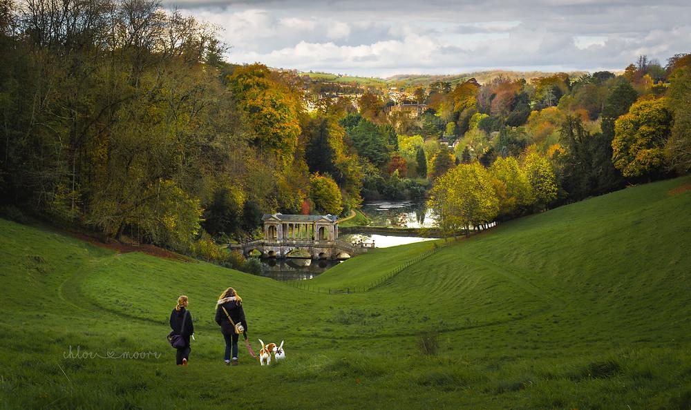 City of Bath, England . Prior Park Landscape Garden. Palladian Bridge. Activities for children, summer holidays