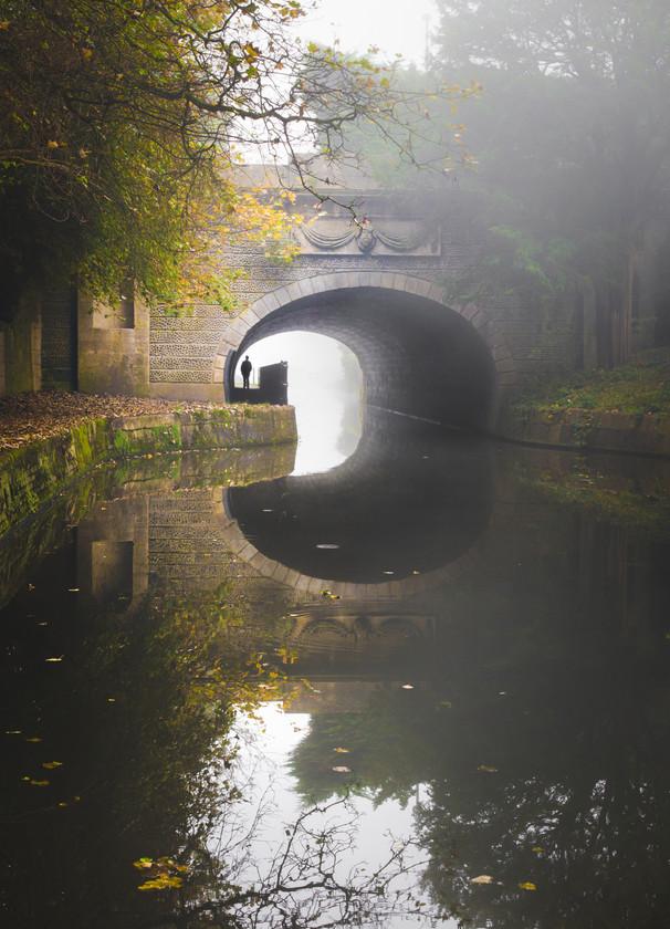 Sydney Gardens in Mist