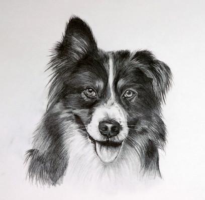 Jake the Dog.jpg