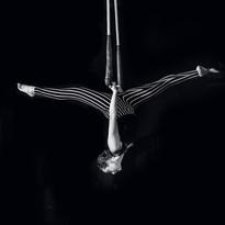 cirque-de-vol-INSTAGRAM-4.jpg