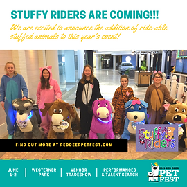 PET FEST 2019 - Square - Stuffy Riders -